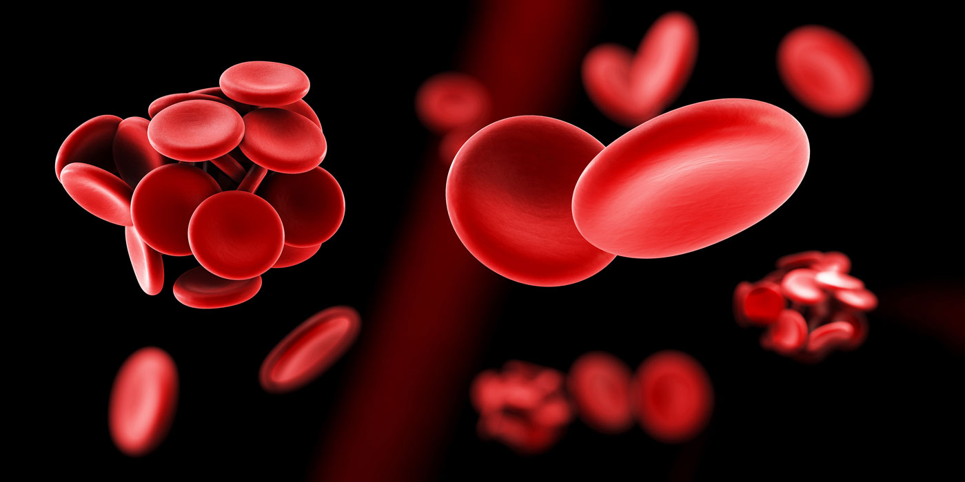 Tall Men and Women At Risk for Deadly Blood Clots